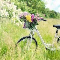 大阪で自転車保険義務化*楽天保険に加入