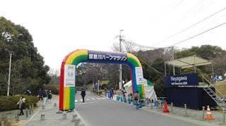 アラフィフ「2度目のハーフマラソン」完走!