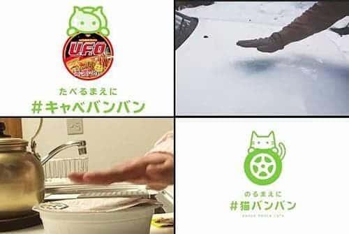 #猫バンバン丸パクリ⁉ #キャベバンバンって何?