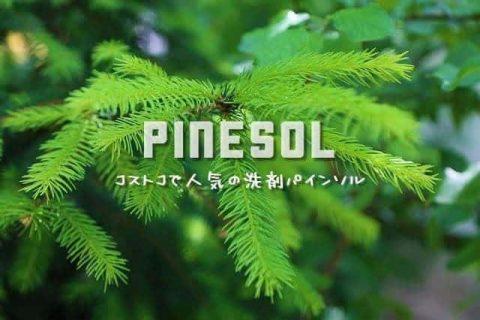 松のマルチクリーナー『パインソル』で○○洗剤を断捨離