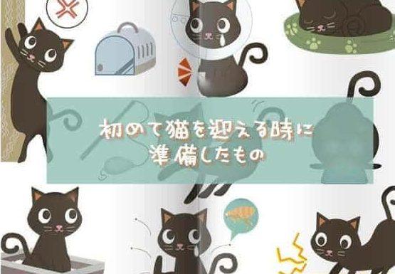 """《初めて猫を迎える時の準備品》""""必須の3点""""とおすすめ品"""
