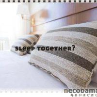 夫婦別々ベッド*狭い賃貸ならセミシングル
