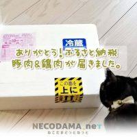 ふるさと納税 南さつま市の黒豚&竹田市のハーブ鶏肉が届きました