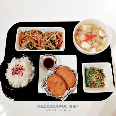 青椒肉絲 豆腐と白菜の生姜あんかけ コロッケ 水菜納豆和え
