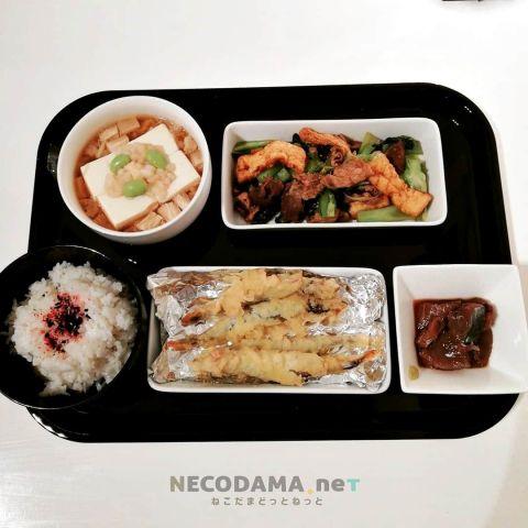 エノキ温豆腐 小松菜と薄揚げのカレー炒め 子持ちししゃもの天ぷら カツオ刺し身漬け