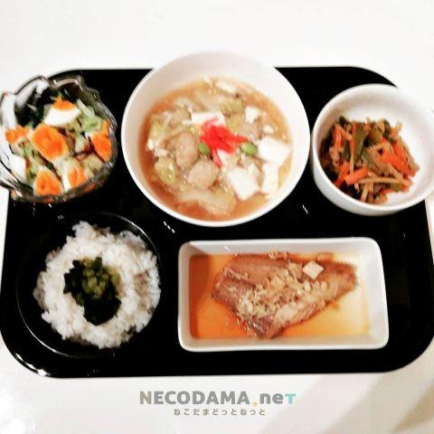 キャベツとゆで卵のサラダ 豆腐と白菜の生姜あんかけ 青椒肉絲 ナメタガレイの煮付け