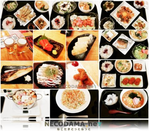 夫婦2人で食費~3万円 我が家の1週間の献立写真と食費 18/12/3編 @42