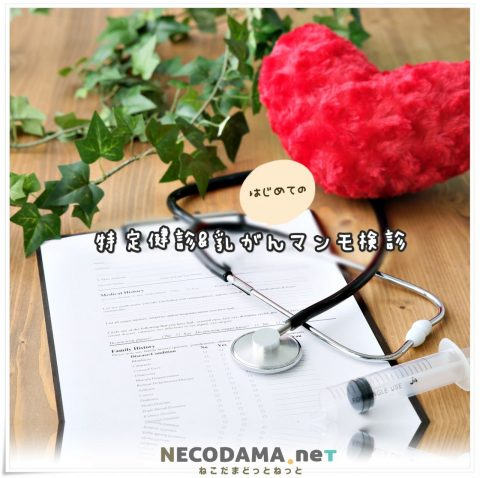 淀川健康管理センター*初めての乳がん検診