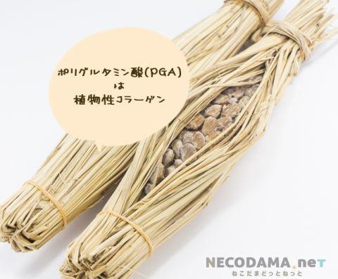 納豆化粧水の成分・口コミ|保湿力抜群|アトピー&敏感乾燥肌に