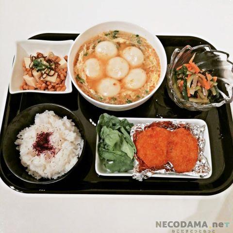 アラフォー夫婦『食費月~3万円』|1週間の献立日記 19/2/3編