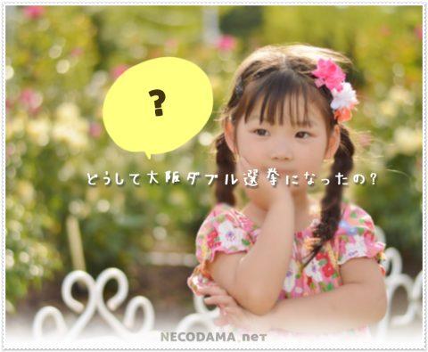 大阪ダブル選挙(2019)になった理由は?超ざっくり解説