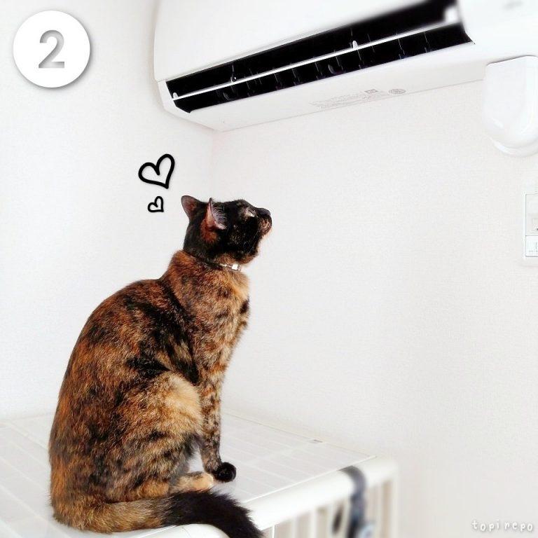 見つめる先は、エアコン