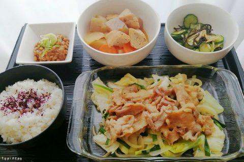 野菜たっぷり焼き肉@夕食ネット:体験6日目