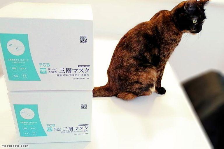 猫と大きさ比較してみる。