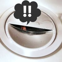 キッチン排水口の落とし物達の拾得記録。